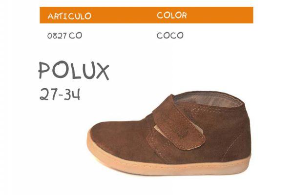 polux18C2FBDD-DF05-F089-607C-7478ECAE4A98.jpg